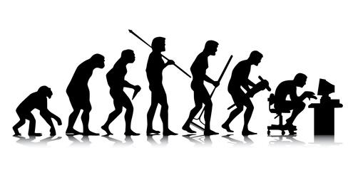 Evolucion Desarrollador